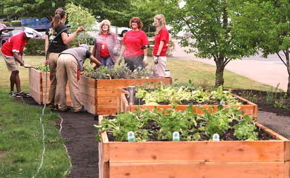 Garden For The Community Now Open At Community Center